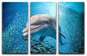 Dolphin underwater on ocean 3 Split Panel Canvas Print - Canvas Art Rocks - 1