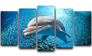 Dolphin underwater on ocean 5 Split Panel Canvas  - Canvas Art Rocks - 1