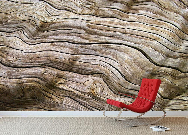 Driftwood Wall Mural Wallpaper - Canvas Art Rocks - 1