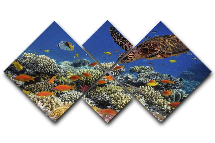 Eretmochelys imbricata floats under water 4 Square Multi Panel Canvas