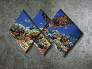 Eretmochelys imbricata floats under water 4 Square Multi Panel Canvas  - Canvas Art Rocks - 2