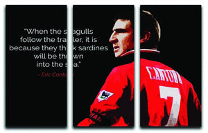 Eric Cantona Seagulls 3 Split Panel Canvas Print - Canvas Art Rocks - 1