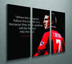 Eric Cantona Seagulls 3 Split Panel Canvas Print - Canvas Art Rocks - 2