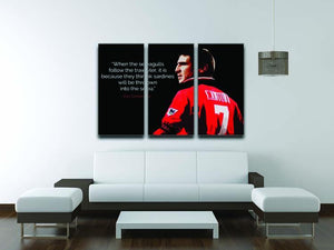 Eric Cantona Seagulls 3 Split Panel Canvas Print - Canvas Art Rocks - 3