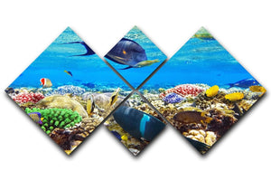 Fish in the Red Sea 4 Square Multi Panel Canvas  - Canvas Art Rocks - 1