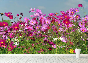 Flower field with blue sky Wall Mural Wallpaper - Canvas Art Rocks - 4