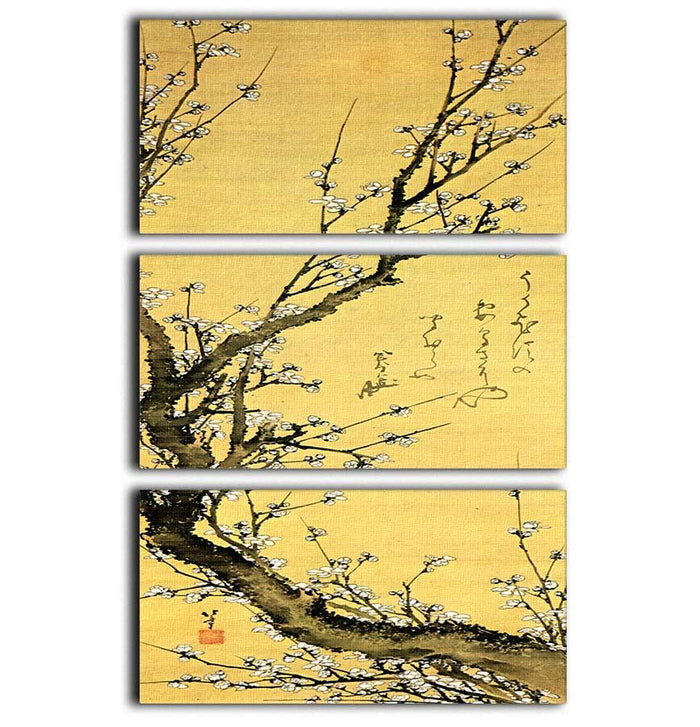 Flowering plum by Hokusai 3 Split Panel Canvas Print