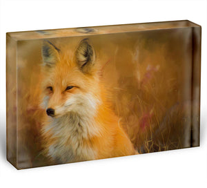 Fox Painting Acrylic Block - Canvas Art Rocks - 1