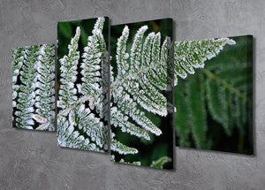 Frosty Fern 4 Split Panel Canvas - Canvas Art Rocks - 2