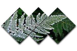 Frosty Fern 4 Square Multi Panel Canvas - Canvas Art Rocks - 1