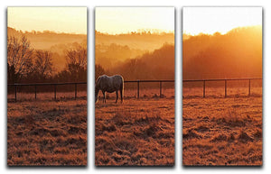 Frosty Morning 3 Split Panel Canvas Print - Canvas Art Rocks - 1