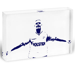 Gazza Acrylic Block - Canvas Art Rocks - 1