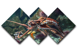 Giant Pacific octopus 4 Square Multi Panel Canvas  - Canvas Art Rocks - 1