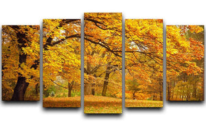 Gold Trees in a park 5 Split Panel Canvas  - Canvas Art Rocks - 1