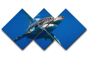Great White 4 Square Multi Panel Canvas  - Canvas Art Rocks - 1