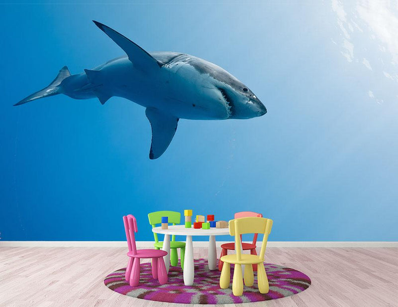 Great white shark Guadalupe Island Wall Mural Wallpaper - Canvas Art Rocks - 1