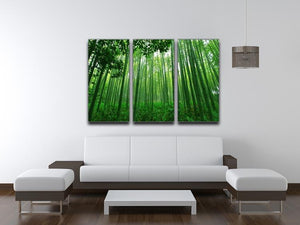 Green bamboo forest 3 Split Panel Canvas Print - Canvas Art Rocks - 3