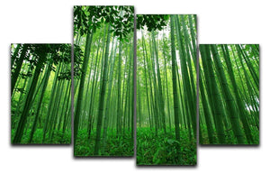 Green bamboo forest 4 Split Panel Canvas  - Canvas Art Rocks - 1