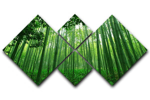Green bamboo forest 4 Square Multi Panel Canvas  - Canvas Art Rocks - 1