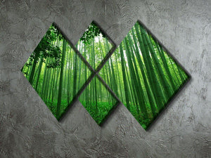Green bamboo forest 4 Square Multi Panel Canvas  - Canvas Art Rocks - 2