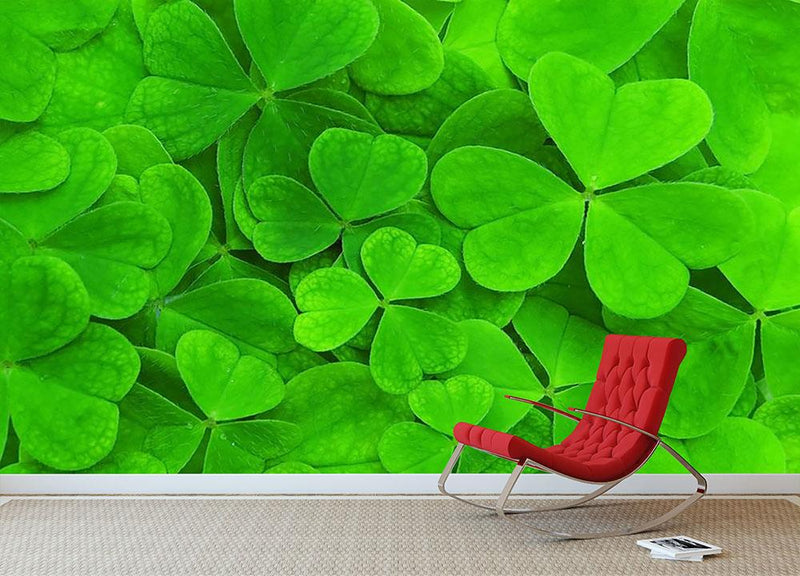 Green clover leaf Wall Mural Wallpaper - Canvas Art Rocks - 1