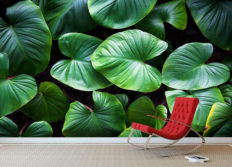 Green plant Wall Mural Wallpaper - Canvas Art Rocks - 1