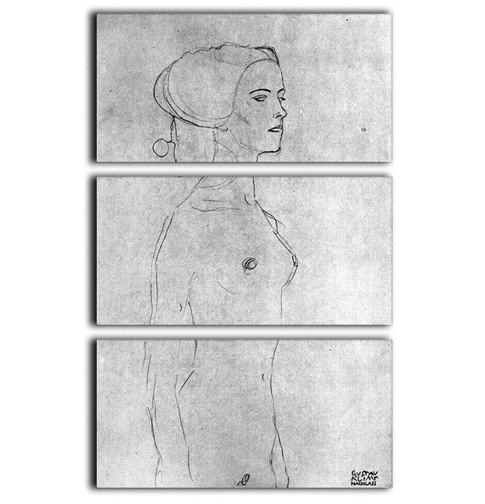 Half a picture to the right Schreitenden by Klimt 3 Split Panel Canvas Print