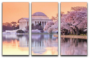 Jefferson Memorial during the Cherry Blossom Festival 3 Split Panel Canvas Print - Canvas Art Rocks - 1