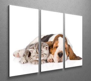 Kitten and puppy sleeping together. isolated on white background 3 Split Panel Canvas Print - Canvas Art Rocks - 2