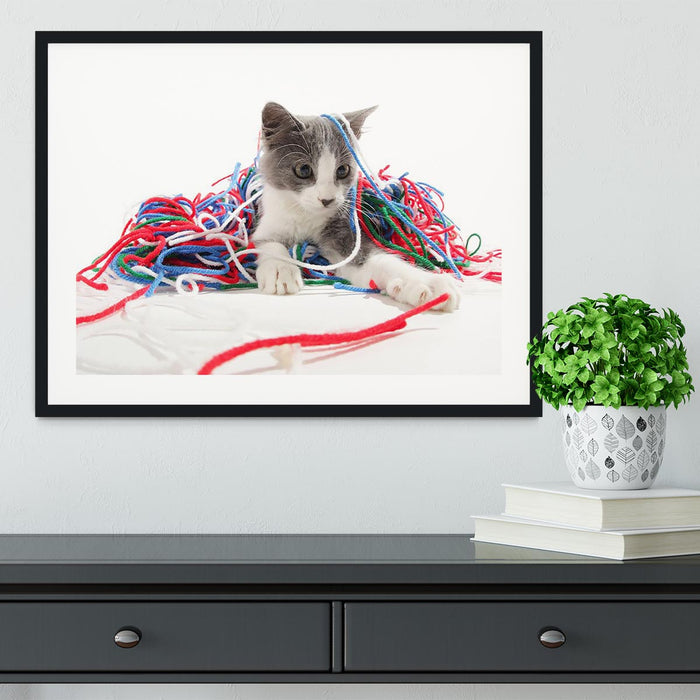 Kitten playing with yarn Framed Print