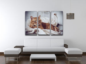 Large home fluffy ginger cat lying on the sofa 3 Split Panel Canvas Print - Canvas Art Rocks - 3