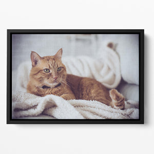 Large home fluffy ginger cat lying on the sofa Floating Framed Canvas - Canvas Art Rocks - 2