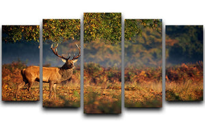 Large red deer stag in autumn 5 Split Panel Canvas - Canvas Art Rocks - 1