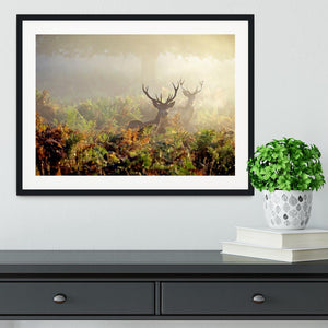 Large red deer stag in mist Framed Print - Canvas Art Rocks - 1