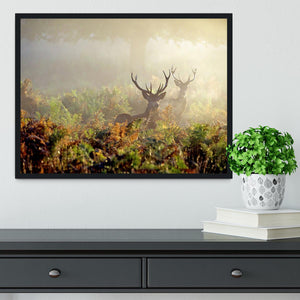 Large red deer stag in mist Framed Print - Canvas Art Rocks - 2