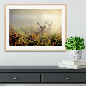 Large red deer stag in mist Framed Print - Canvas Art Rocks - 3