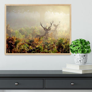 Large red deer stag in mist Framed Print - Canvas Art Rocks - 4