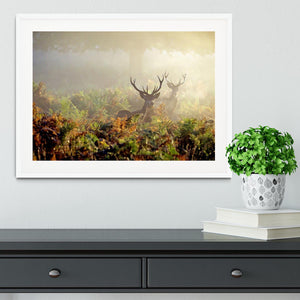 Large red deer stag in mist Framed Print - Canvas Art Rocks - 5