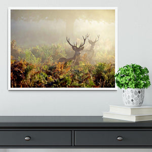 Large red deer stag in mist Framed Print - Canvas Art Rocks -6