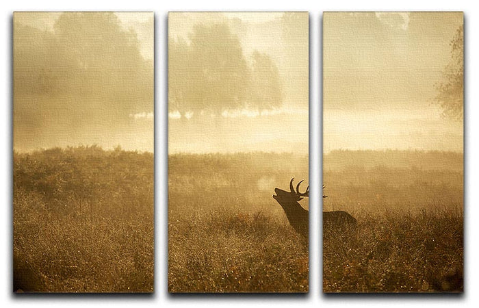 Large red deer stag silhouette in autumn 3 Split Panel Canvas Print