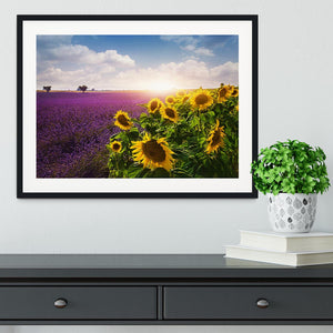Lavender and sunflowers fields Framed Print - Canvas Art Rocks - 1