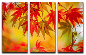 Leaf Patterns 3 Split Panel Canvas Print - Canvas Art Rocks - 1