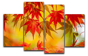 Leaf Patterns 4 Split Panel Canvas - Canvas Art Rocks - 1