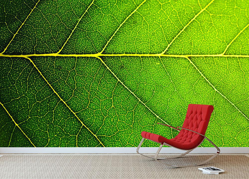 Leaf macro shot Wall Mural Wallpaper - Canvas Art Rocks - 1