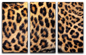 Leopard skin texture 3 Split Panel Canvas Print - Canvas Art Rocks - 1