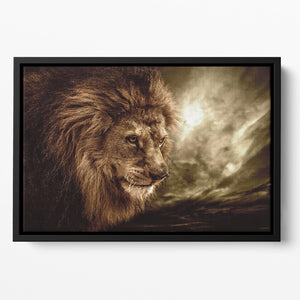 Lion against stormy sky Floating Framed Canvas - Canvas Art Rocks - 2