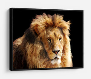 Lion head HD Metal Print - Canvas Art Rocks - 6