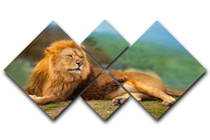 Lion male having a rest 4 Square Multi Panel Canvas - Canvas Art Rocks - 1