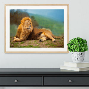 Lion male having a rest Framed Print - Canvas Art Rocks - 3
