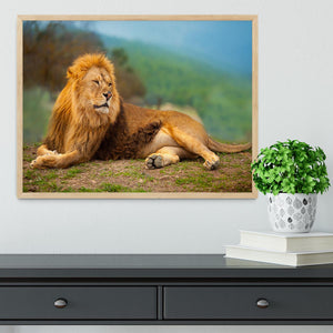 Lion male having a rest Framed Print - Canvas Art Rocks - 4